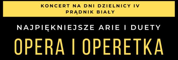 Plenerowy koncert arii i duetów operowych
